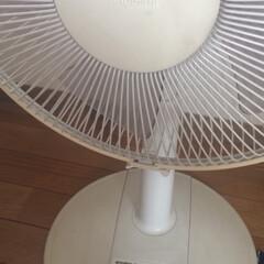 扇風機/はじめてフォト投稿 自室の扇風機です 冷房つけない日はフル稼…