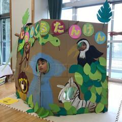 5歳/楽しい保育園児/はじめてフォト投稿 夏のお祭り。 今年のテーマはジャングル …