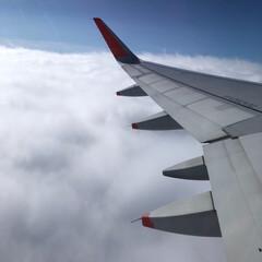 飛行機/雲/空/羽/はじめてフォト投稿 飛行機作った人はすごい!