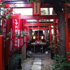 稲荷神社/奥渋谷/はじめてフォト投稿 奥渋谷に取り残された様な稲荷神社