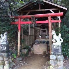 稲荷神社/高尾山/はじめてフォト投稿 高尾山の稲荷神社にお参りしてから登山