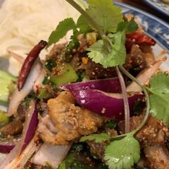 タイ/サラダ/食事情 タイのサラダです。おいしいです。