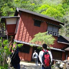 みんなにおすすめ 栃木県の日光江戸村の忍者屋敷の写真です。…