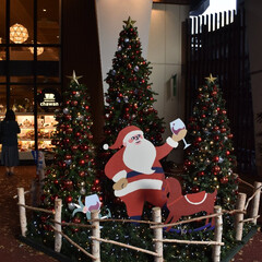 クリスマス/サンタ/クリスマスツリー 高架下にあるクリスマスツリーを撮影しまし…(1枚目)