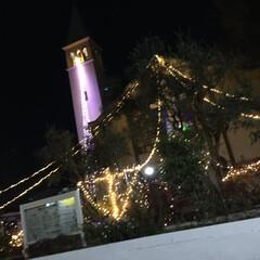 クリスマスツリー/教会/クリスマス 東京都杉並区にある井草カトリック教会で撮…(1枚目)