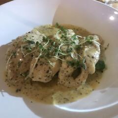 チキン/グルメ/ギリシャ料理/ギリシャ/オーストラリア/はじめてフォト投稿 オーストラリアで食べたgreek food