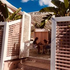 ピンク/ブリスベン/オーストラリア/カフェ/はじめてフォト投稿 カフェ