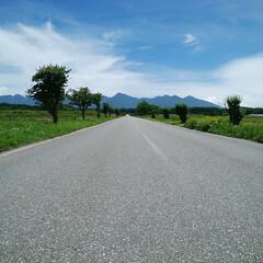 信州/長野県/原村/八ヶ岳/一直線の道/おでかけワンショット 長野県諏訪郡原村の農道です、 八ヶ岳に向…