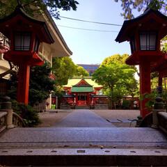 おでかけワンショット/カメラ/福岡 福岡に行った時の写真✨