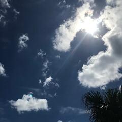 夏空/おでかけワンショット 車から空を見ていて、「お母さんカメラ貸し…