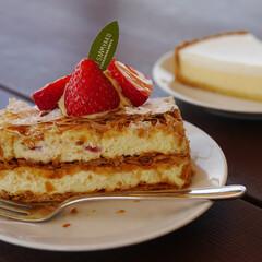 はらぺこグルメ/恵那川上屋/恵那カフェ/ミルフィーユ/いちご/チーズケーキ 恵那川上屋でいただけるいちごのミルフィー…