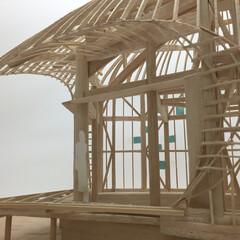 木造シェル/ドーム/土壁 もりのいえ MODEL
