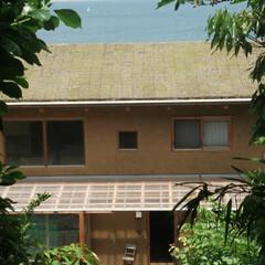 草屋根 みらいのいえ 海が見える草屋根の家