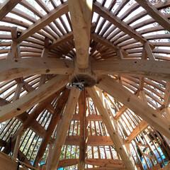 木造ドーム/土壁/木造シェル/長野 もりのいえ 長野県に工事中のこれまでにな…