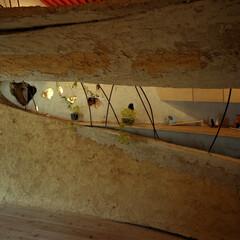 土壁/リノベーション 神田SU / nest  -ビルの中の土…