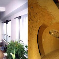 リノベーション/土壁/曲線/植栽/間接照明 神田SU - ビルの中の土壁の家-  B…