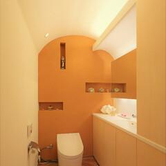 土壁/間接照明/アーチ天井 海を臨む家 土壁のトイレ・サニタリー  …