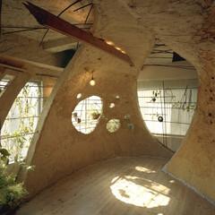 土壁/リノベーション/植栽 神田SU/nest -ビルの中の土壁の家…