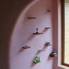 土壁/しっくい/ベンガラ 森風エコキャビン   土壁しっくい仕上げ…
