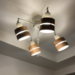 スポットライト/照明器具/オシャレ/ルームライト/ナチュラル/照明 シンプルな部屋なので、温かみを出すために…(2枚目)