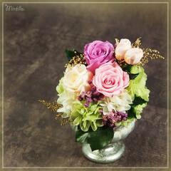 プリザーブドフラワー/ハンドメイド/インテリア雑貨/天然素材 (高さ約14cm・幅約10cm) 天然花…