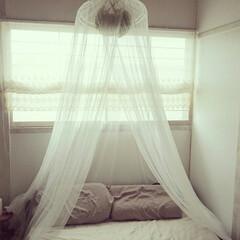 寝室インテリア/寝室リフォーム/寝室/セルフリフォーム/セルフリノベーション/はじめてフォト投稿/... 寝室の和室を洋室化してみました。  ・障…