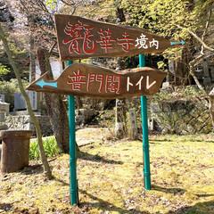 """手作り看板/DIY 今日も朝から""""今高野山""""へ🤨 """"今高野山…(2枚目)"""