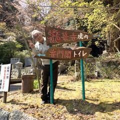 """手作り看板/DIY 今日も朝から""""今高野山""""へ🤨 """"今高野山…(1枚目)"""