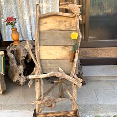 """オブジェ/DIY 山から""""枯木枝""""を拾ってきた🤭 """"流木""""…"""