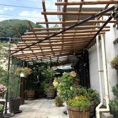 生活の知恵/DIY/夏対策 先般 尾道に別荘をお持ちのマダムからの依…