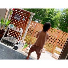 ベランダガーデン/小さな庭/韓国インテリア/賃貸インテリア/団地インテリア/BOHOインテリア/... (2枚目)