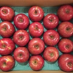クリスマスがやってくる/青森/りんご/クリスマスツリーのオーナメント/クリスマス 毎年送ってくださる青森のりんご。 クリス…