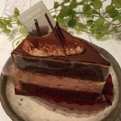 私のお気に入り/チョコレートケーキ/定番/コーヒー/緑茶/わたしのお気に入り チョコレートケーキも定番です。 家族で食…