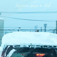 冬の1枚。/車の雪下ろし/北国あるある/冬 冬の1枚。 車が帽子をかぶっているように…