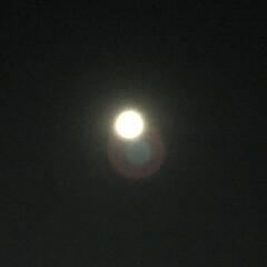 平成最後の一枚/満月/ピンクムーン 平成最後の、満月。 4月の満月はピンクム…