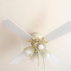 令和元年/シーリングファン/夏の暑さ/冬の暖房の熱/令和元年フォト投稿キャンペーン 空気を攪拌してくれるシーリングファン。 …
