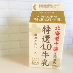 美味しいモノ/牛乳/よつ葉/乳脂肪分/4.0/濃い/... 今日の美味しいモノ。 いつも飲む牛乳を変…