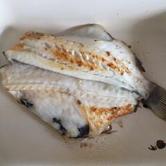 私のご飯/しあわせご飯/つぼ鯛/わたしのごはん 今日の私のご飯は、つぼ鯛の一夜干し。 脂…