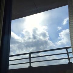 窓/外/日向ぼっこ/家での過ごし方/過ごしやすい状態/片づけ 窓からの眺め。 日差しが温かく、日向ぼっ…