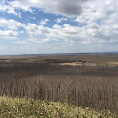 おでかけワンショット。/釧路/湿原/細岡展望台/おでかけワンショット おでかけワンショット。 釧路の湿原を一望…