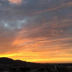 今日の空/夕日/夕暮れ/天気/風景 今日の夕日。 雲の形で夕日も様変わり。 …