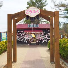 旅の景色。/幸福駅/恋人の聖地/愛の鐘/旅 旅の景色。 北海道にある幸福駅は、恋人の…