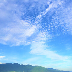 今日の空/天気/雲/空/景色 今日の空。 雲の形が面白かったのでパチリ…