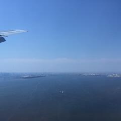 おでかけワンショット。/飛行機/スカイツリー/東京タワー/おでかけワンショット おでかけワンショット。 遠くに東京タワー…
