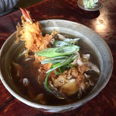 私のご飯/しあわせ/釧路/玉川庵/蕎麦/わたしのごはん しあわせご飯。 釧路の玉川庵さんにて。 …