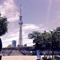 旅の景色。/東京/スカイツリー/人力車/旅 旅の景色。 東京スカイツリーに感動。 人…