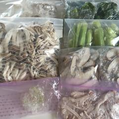 野菜/冷凍/1食分ずつ/小分け/家事ラク 野菜は基本、全部冷凍にします。 野菜室で…