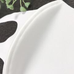 ウィルス対策/シンプル/接触冷感/冷感/マスク/暮らし 接触冷感マスクを購入しました! このタイ…(5枚目)