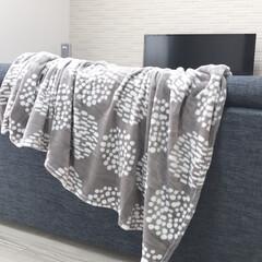 おすすめ/シンプル/北欧風/北欧/毛布/おしゃれ/... 噂の伝説の毛布を購入しました。新商品のサ…(2枚目)