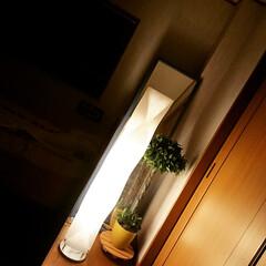 フロアスタンド/照明/プチプラ照明/プチプラ照明見つけた!/花柄/LOWYA ベッドサイドにフロアスタンド(間接照明)…